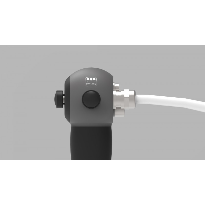 IMAGE GUIDE D: 1.00mm; L: 760mm (Distal end tip OD: 1.20mm; L: 5.00mm)